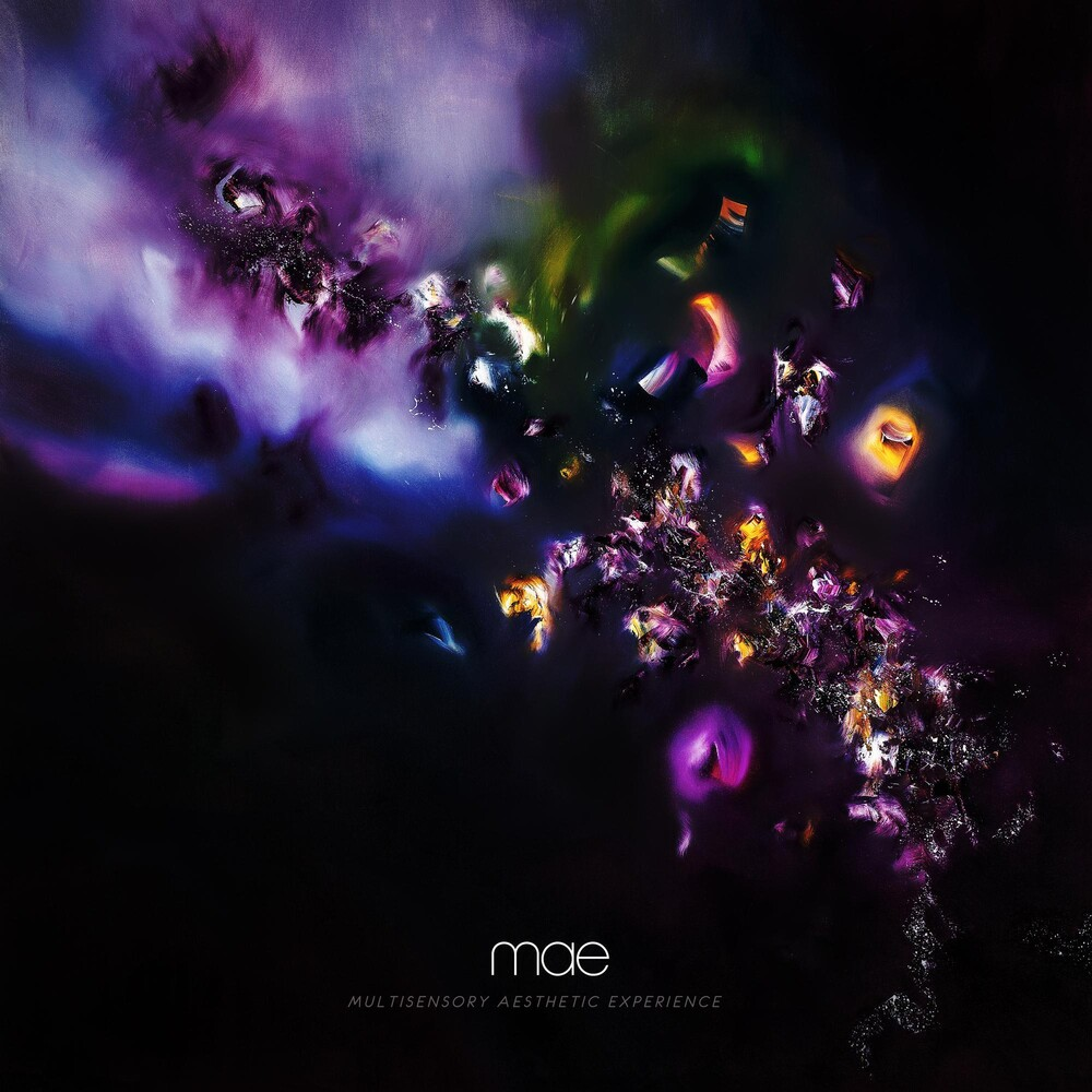 Mae - Multisensory Aesthetic Experience
