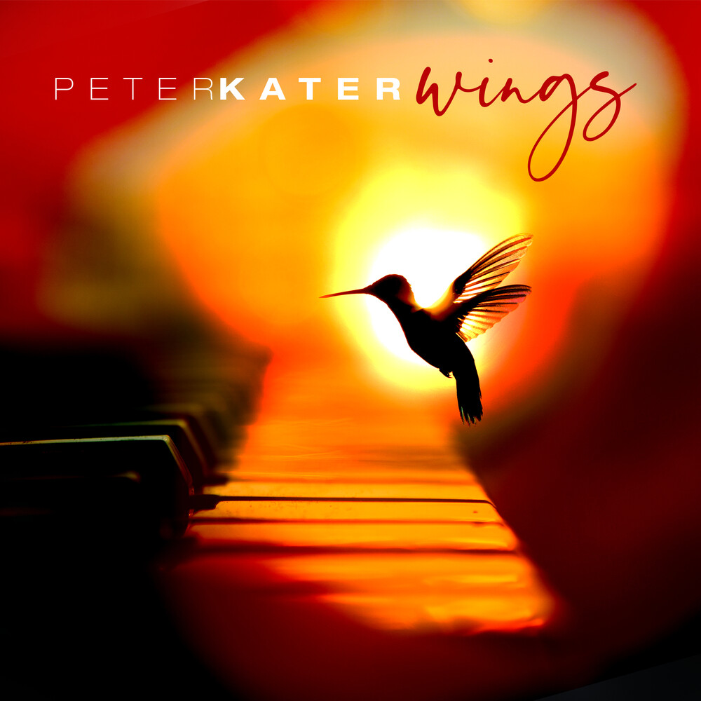 Peter Kater - Wings