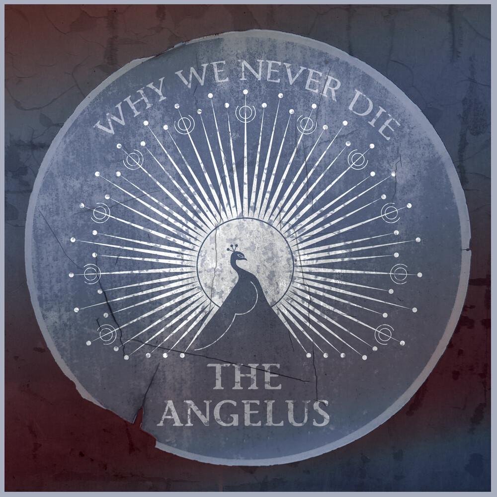 Angelus - Why We Never Die