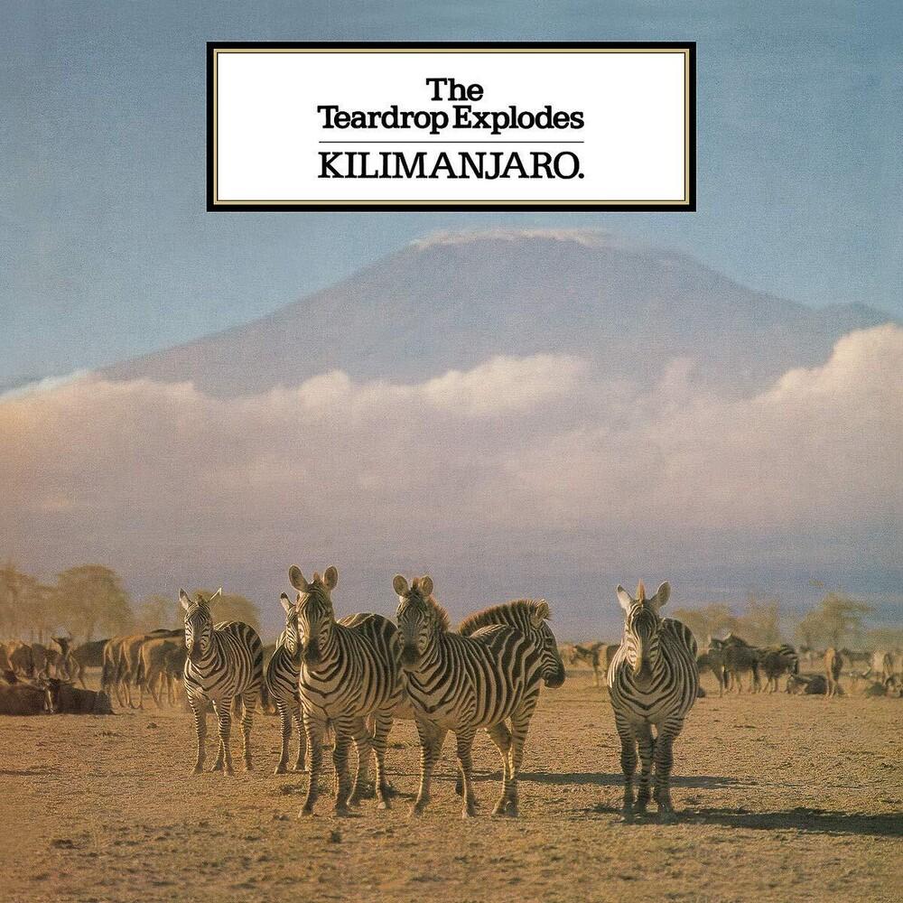 Teardrop Explodes - Kilimanjaro (Uk)