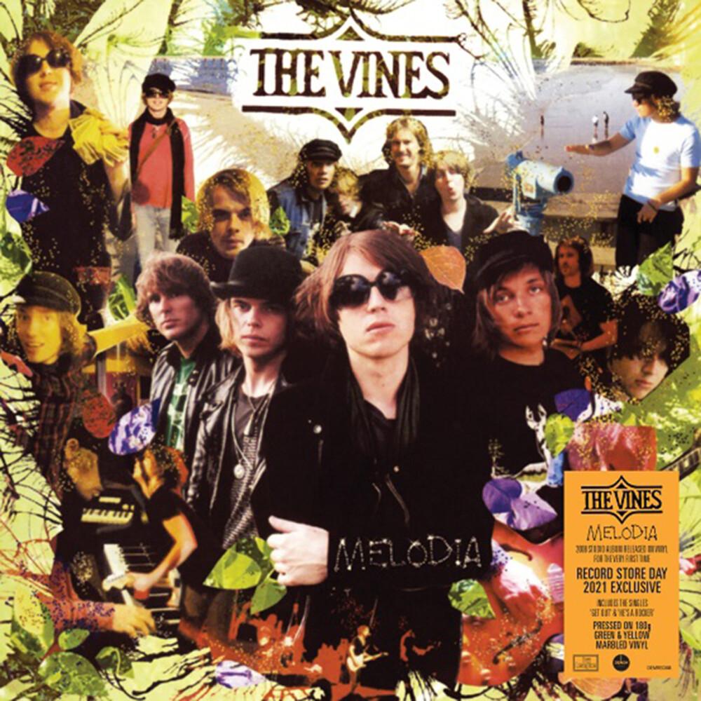 Vines - Melodia [180-Gram Translucent Orange Amber Colored Vinyl]