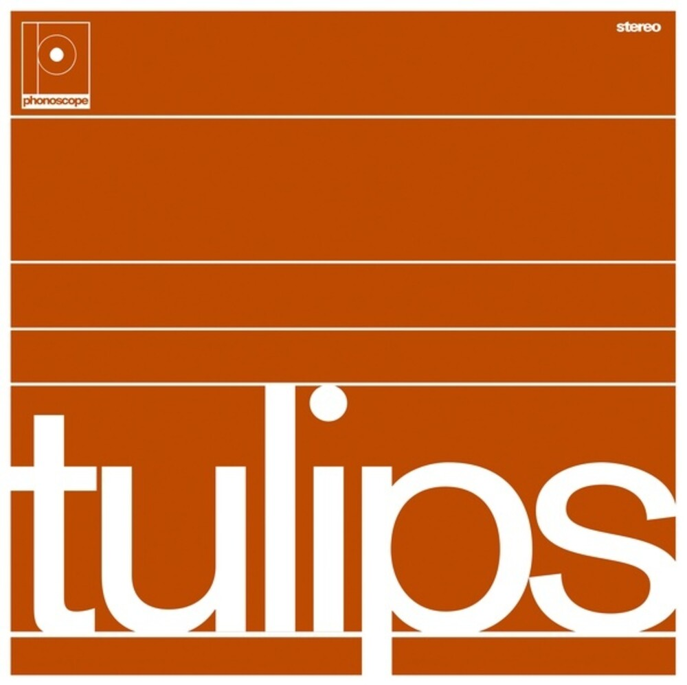 Maston - Tulips (Ltd)