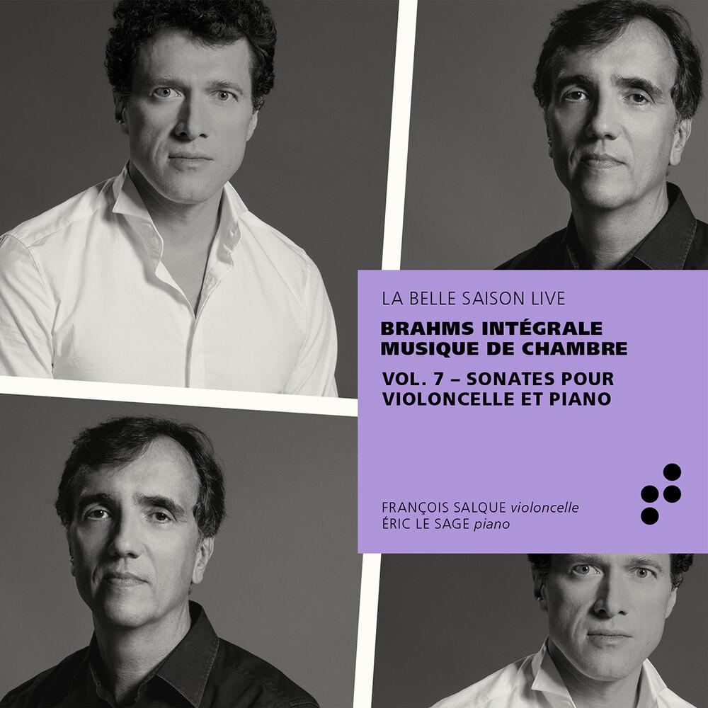 Brahms / Sage / Salque - Integrale Musique De Chamb 7