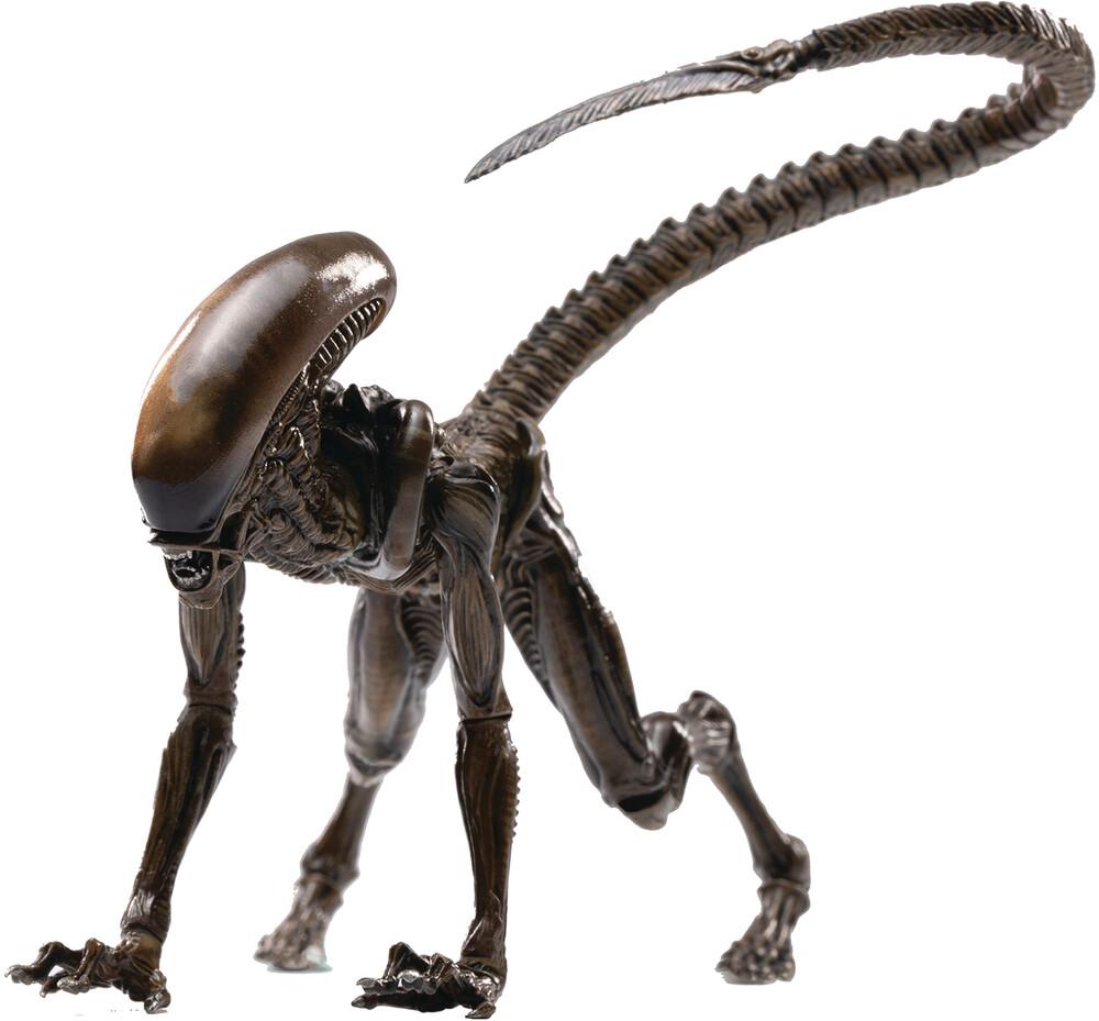 - Alien 3 Look Up Dog Alien Px 1/18 Scale Af (Afig)