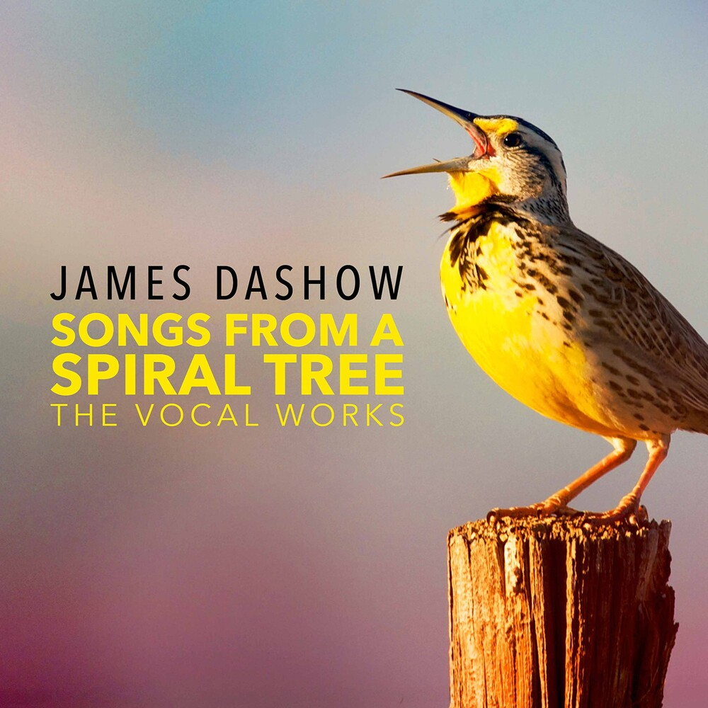 Dashow - Songs From A Spiral Tree