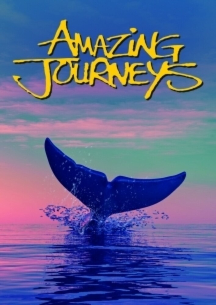 Amazing Journeys - Amazing Journeys