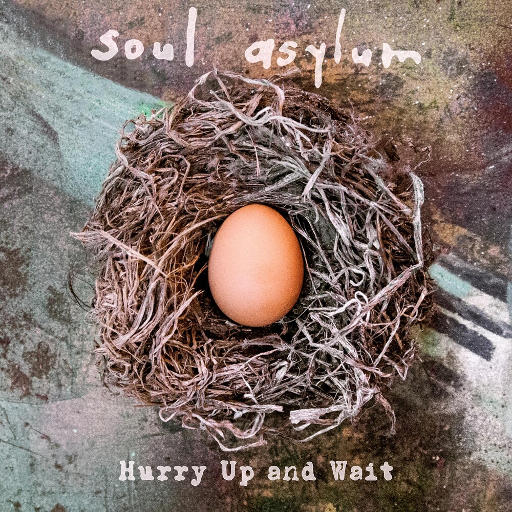 Soul Asylum - Hurry Up and Wait [2LP]