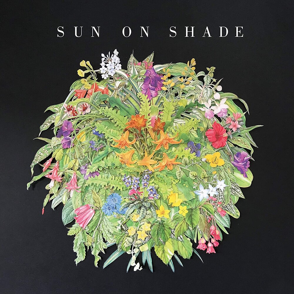 Sun On Shade - Sun On Shade [LP]