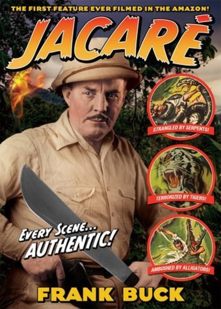 Jacaré - Jacare