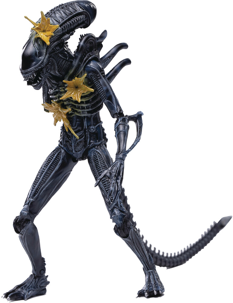 Hiya Toys - Hiya Toys - Aliens Battle Damage Alien Warrior Px 1/18 Scale Figure