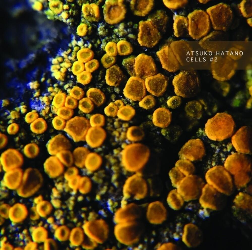 Atsuko Hatano - Cells 5