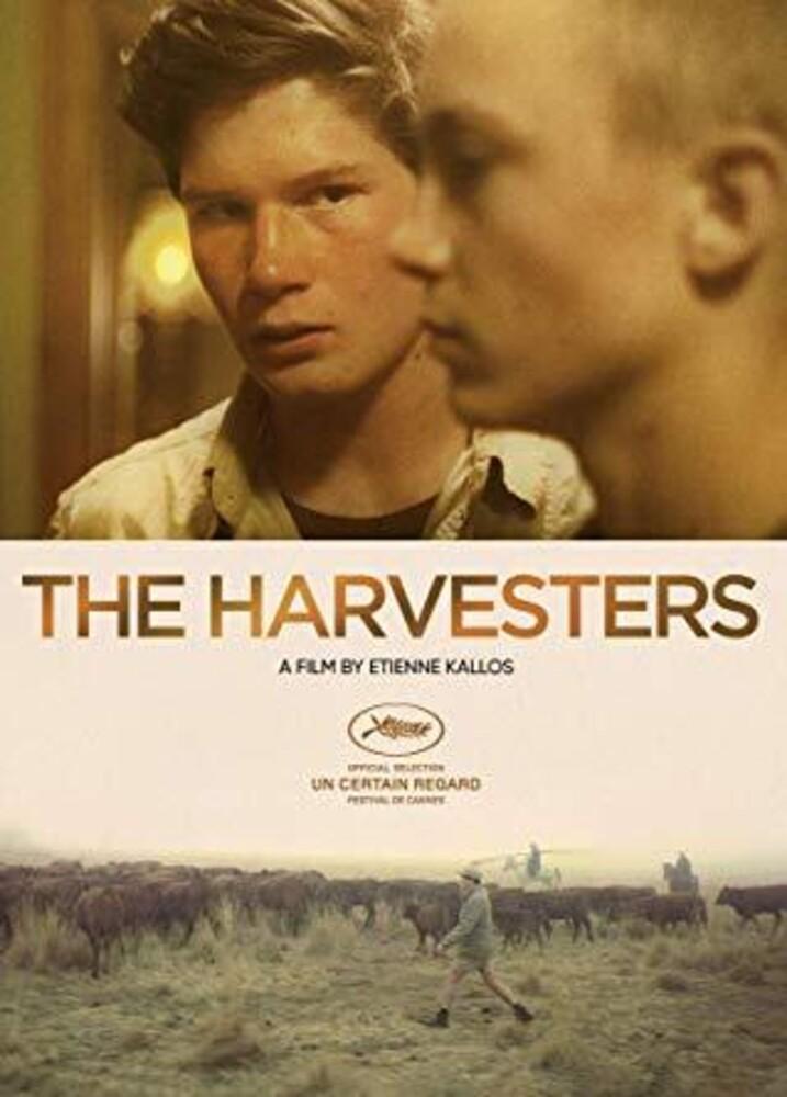 Harvesters - Harvesters