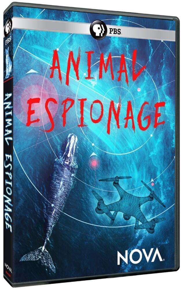 - NOVA: Animal Espionage