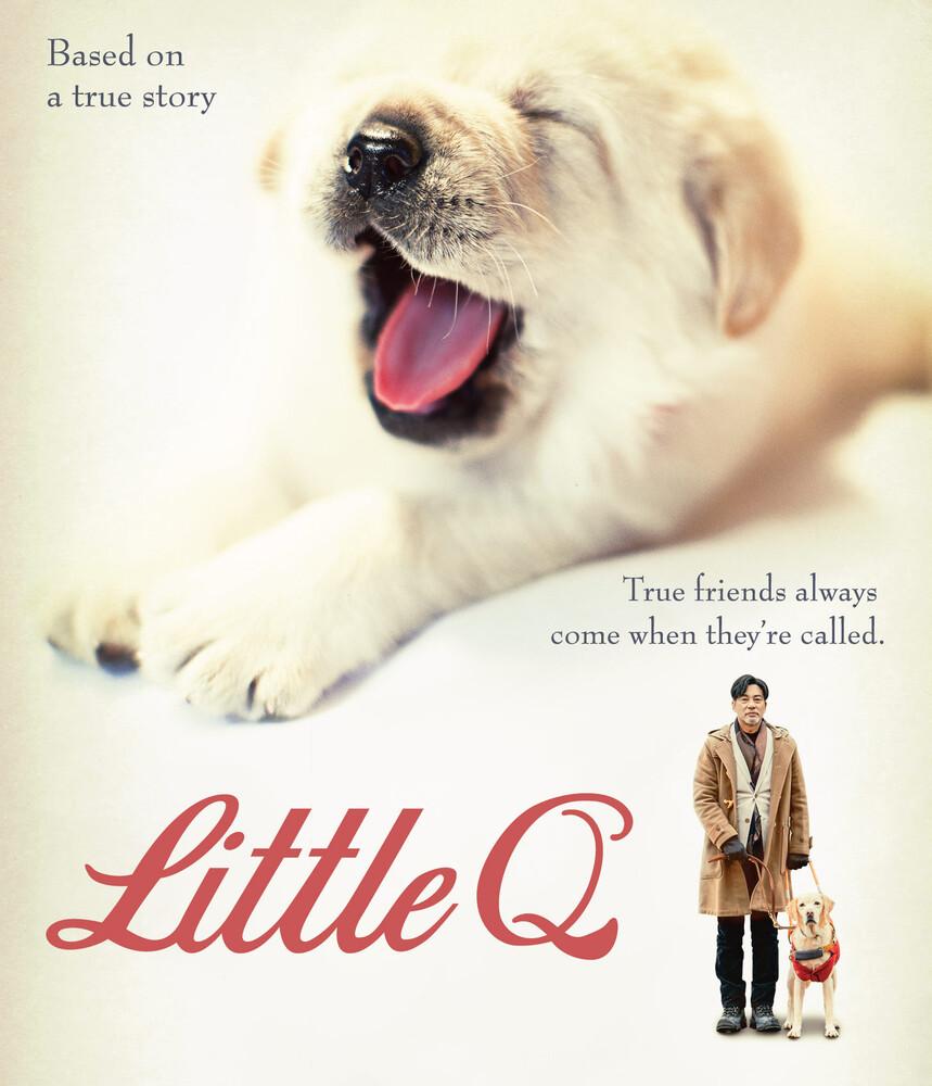 little Q - Little Q