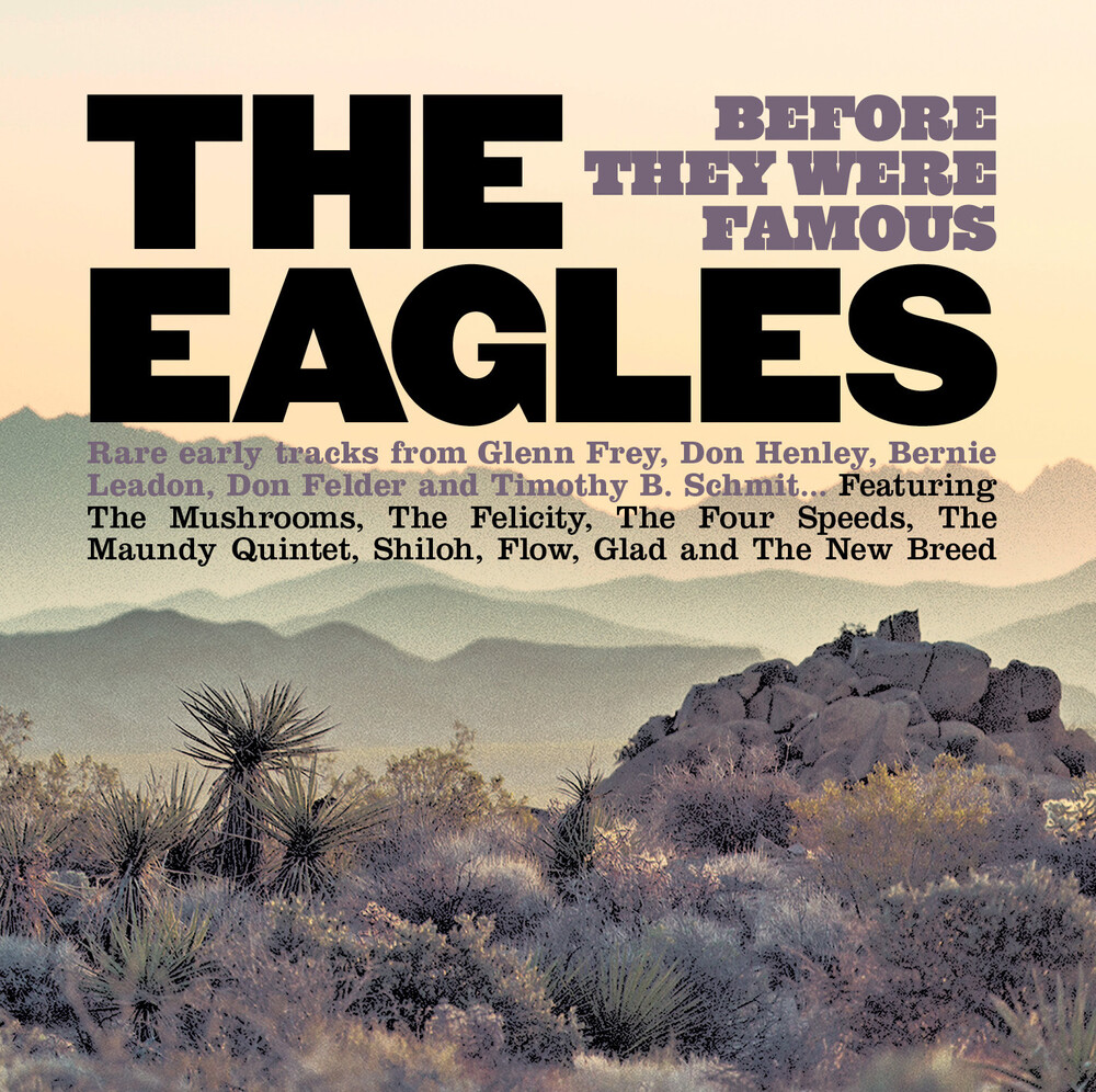 Eagles Before They Were Famous / Various - Eagles Before They Were Famous / Various