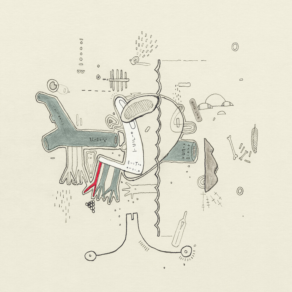Various Artists - Tiny Changes: Celebration Of Frightened Rabbit's 'The Midnight OrganFight' [LP]