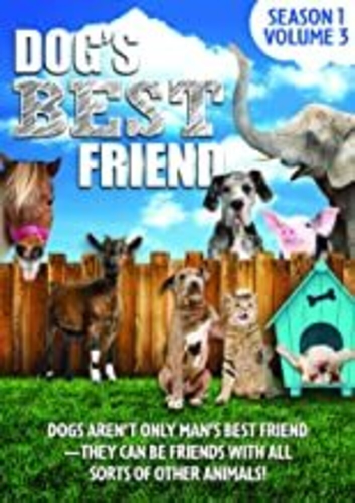 Dog's Best Friend: Season 1 Volume 3 - Dog's Best Friend: Season 1 Volume 3