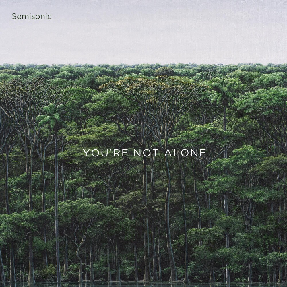 Semisonic - You're Not Alone EP [Vinyl]