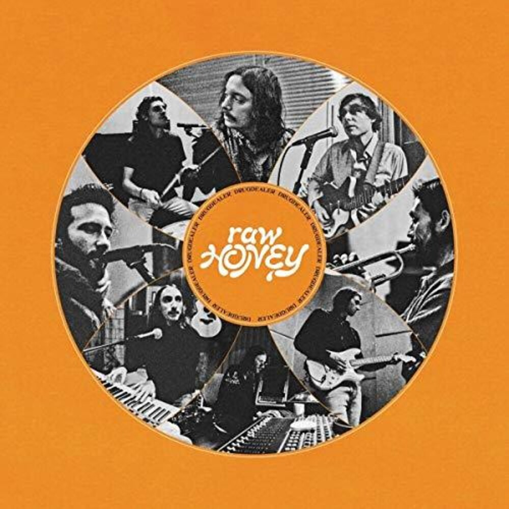 Drugdealer - Raw Honey [LP]