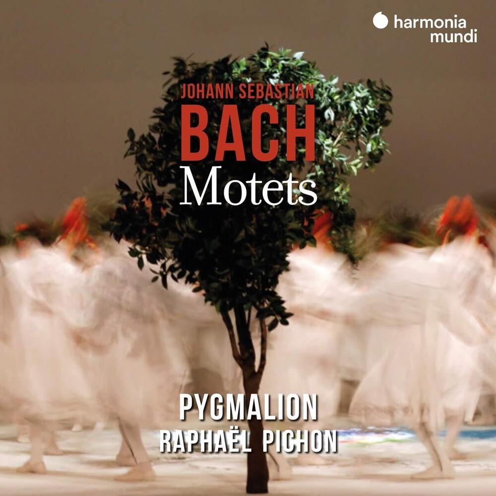 Pygmalion / Raphael Pichon - Bach: Motets