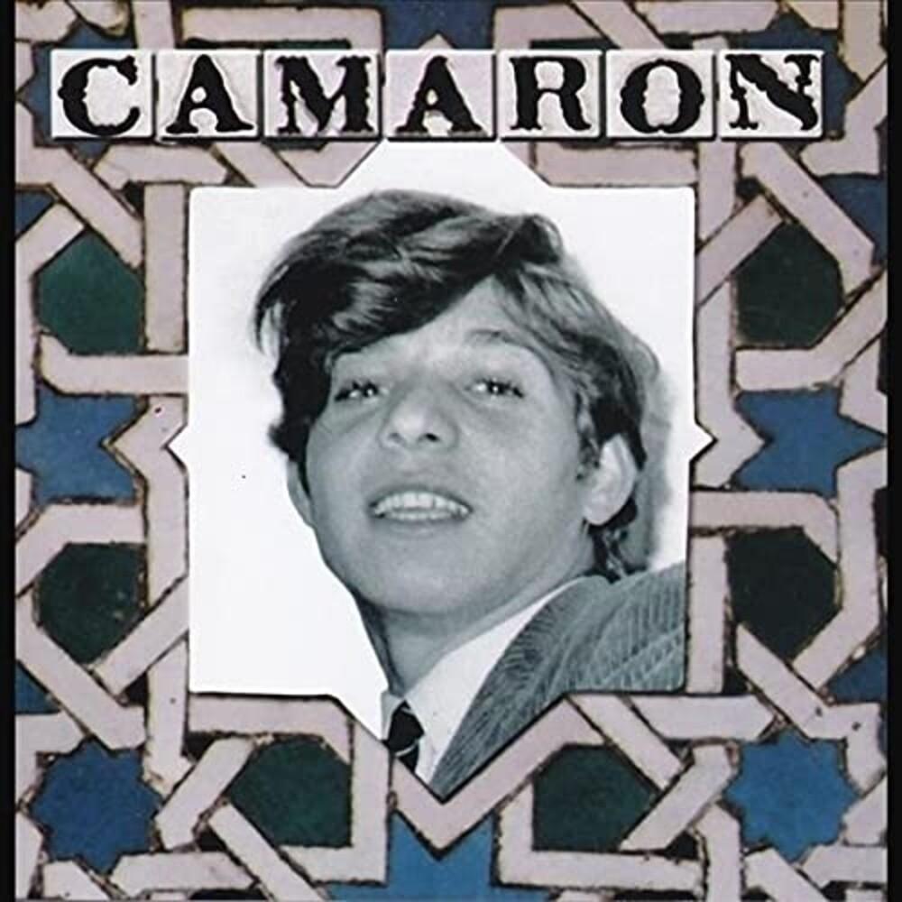 Camaron - Venta De Vargas