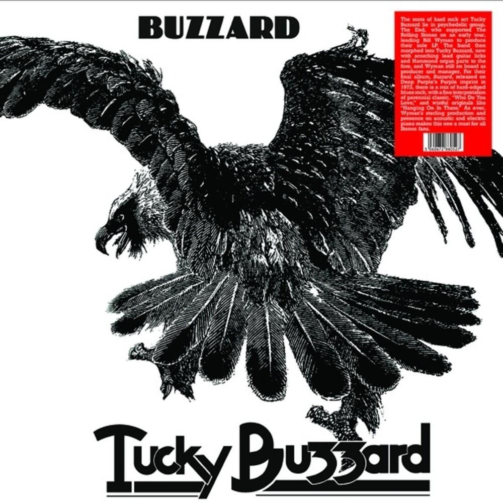 Tucky Buzzard - Buzzard
