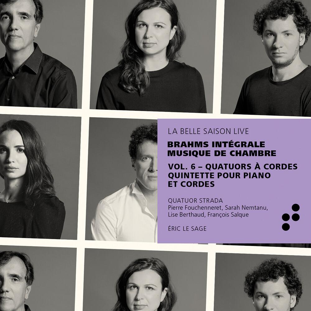 Brahms / Sage / Quatuor Strada - Integrale Musique De Chamber 6 (2pk)