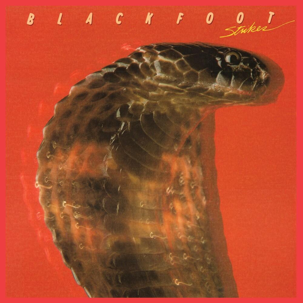 Blackfoot - Strikes [Limited Edition] [180 Gram] (Aniv)