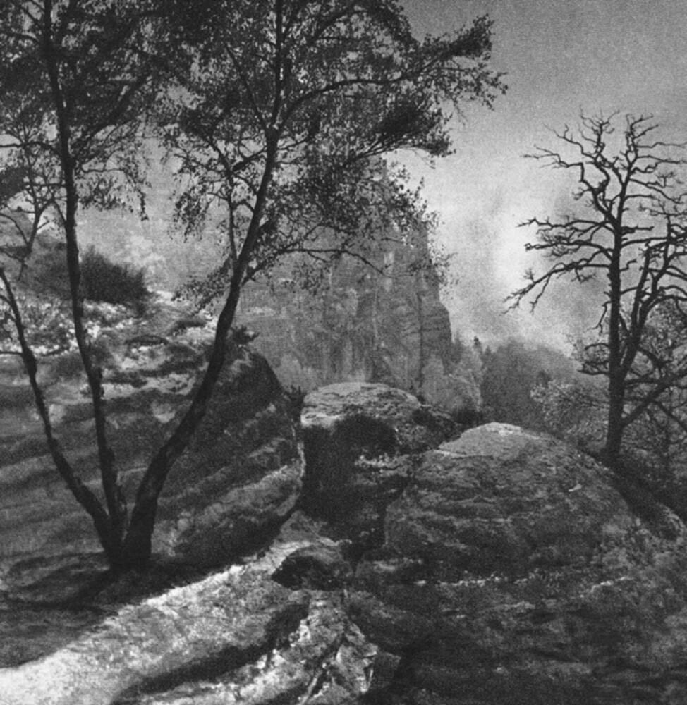 Zen Zsigo Cremation Lily - Winter Orbit