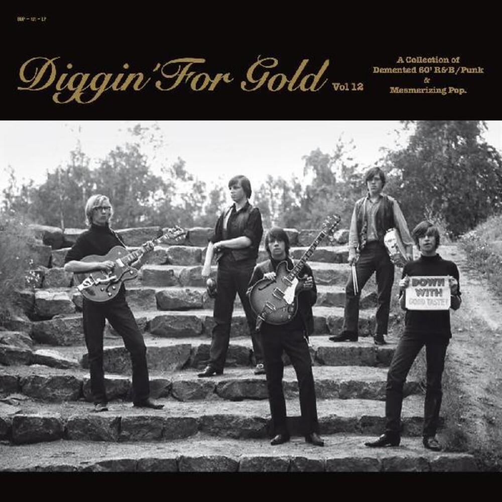 Various Artists - Diggin' For Gold 12 (Various Artists)