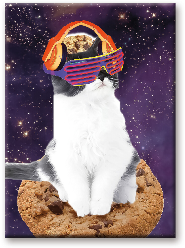 Random Galaxy Rave Cat 2.5 X 3.5 Flat Magnet - Random Galaxy Rave Cat 2.5 X 3.5 Flat Magnet