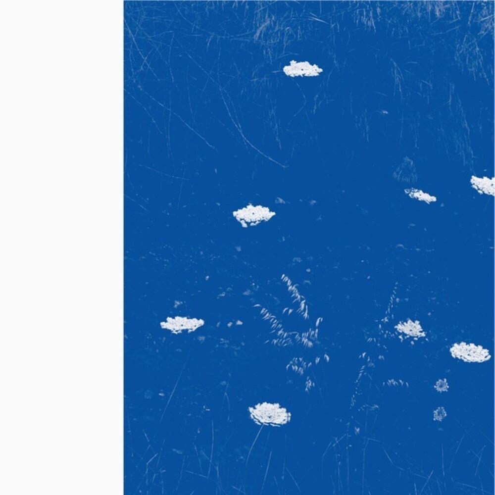 Merzbow - Flare Blues