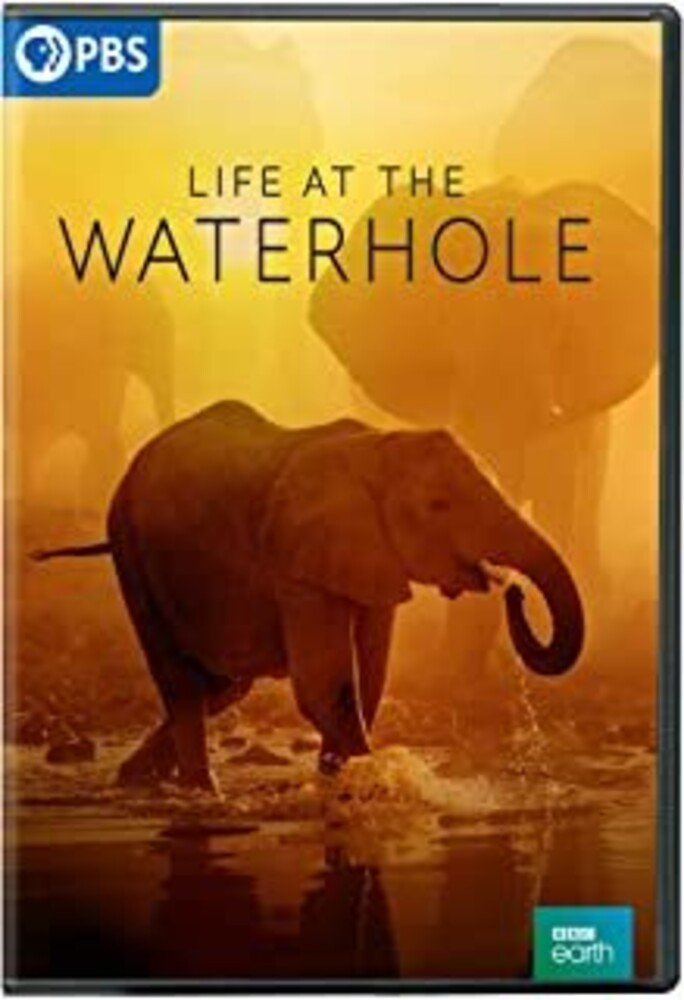 - Life At The Waterhole