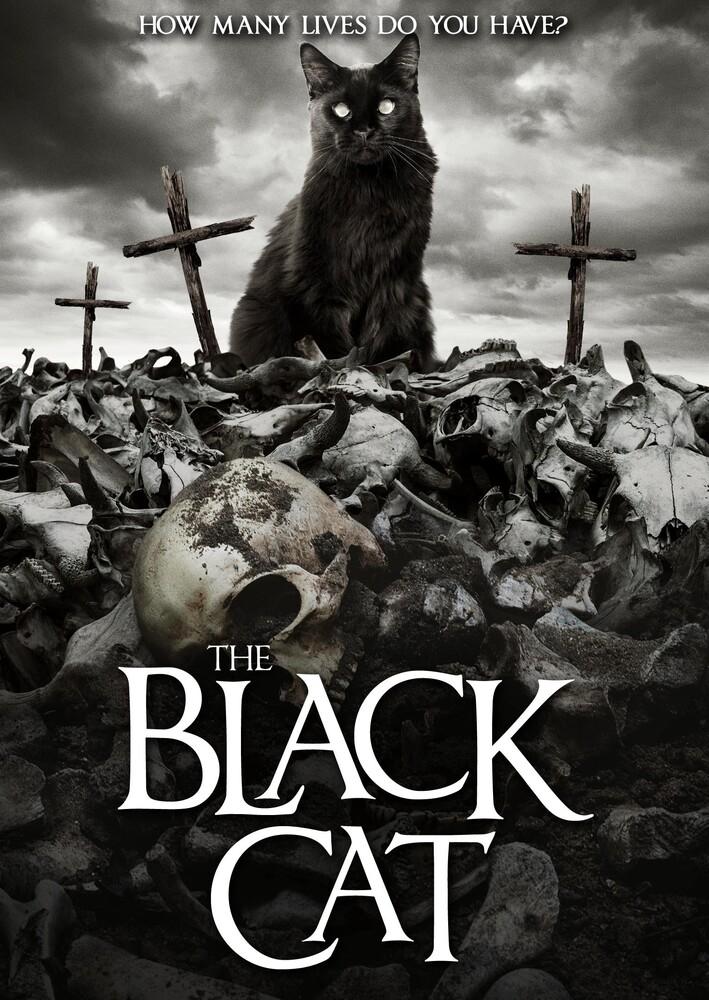 - Black Cat