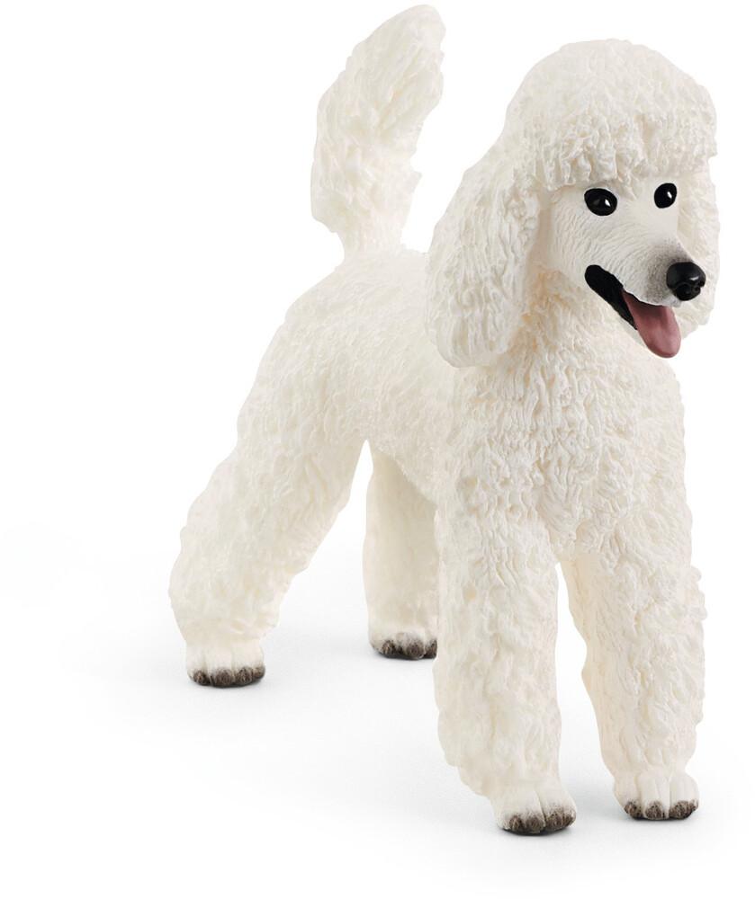 Schleich - Poodle