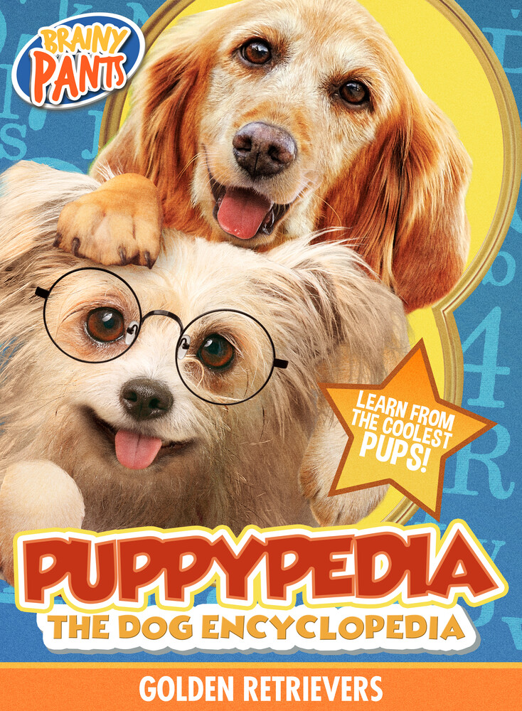 Puppy-Pedia the Dog Encyclopedia: Golden Retriever - Puppy-Pedia The Dog Encyclopedia: Golden Retriever