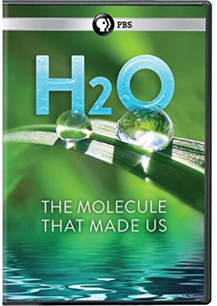 - H2o: Molecule That Made Us