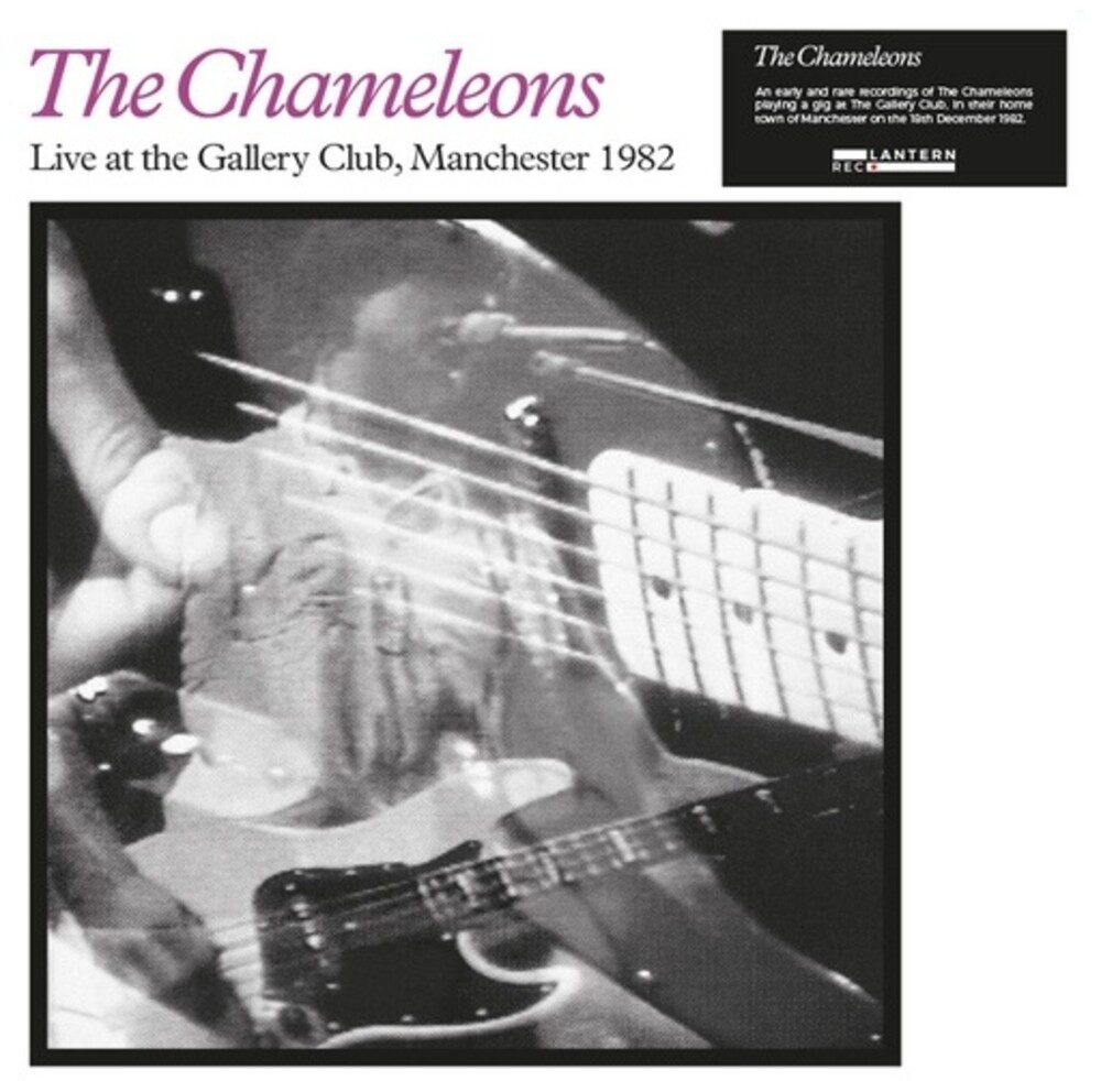 Chameleons - Live at the Gallery Club