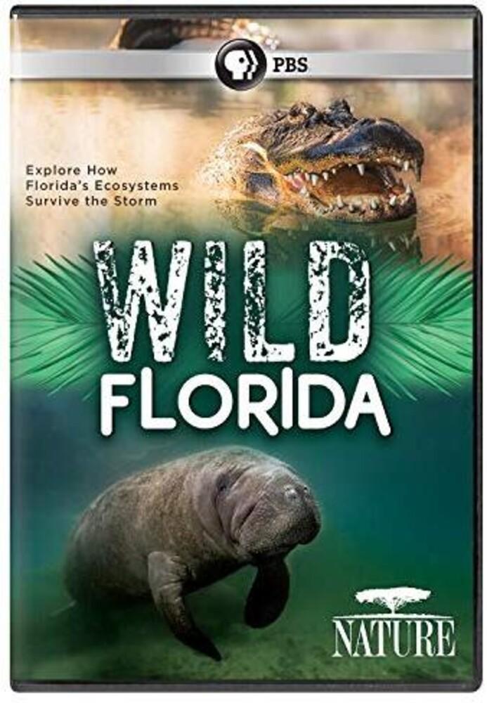 - Nature: Wild Florida