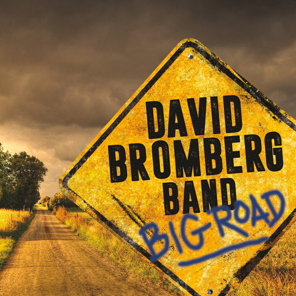 David Bromberg Band - Big Road [LP]