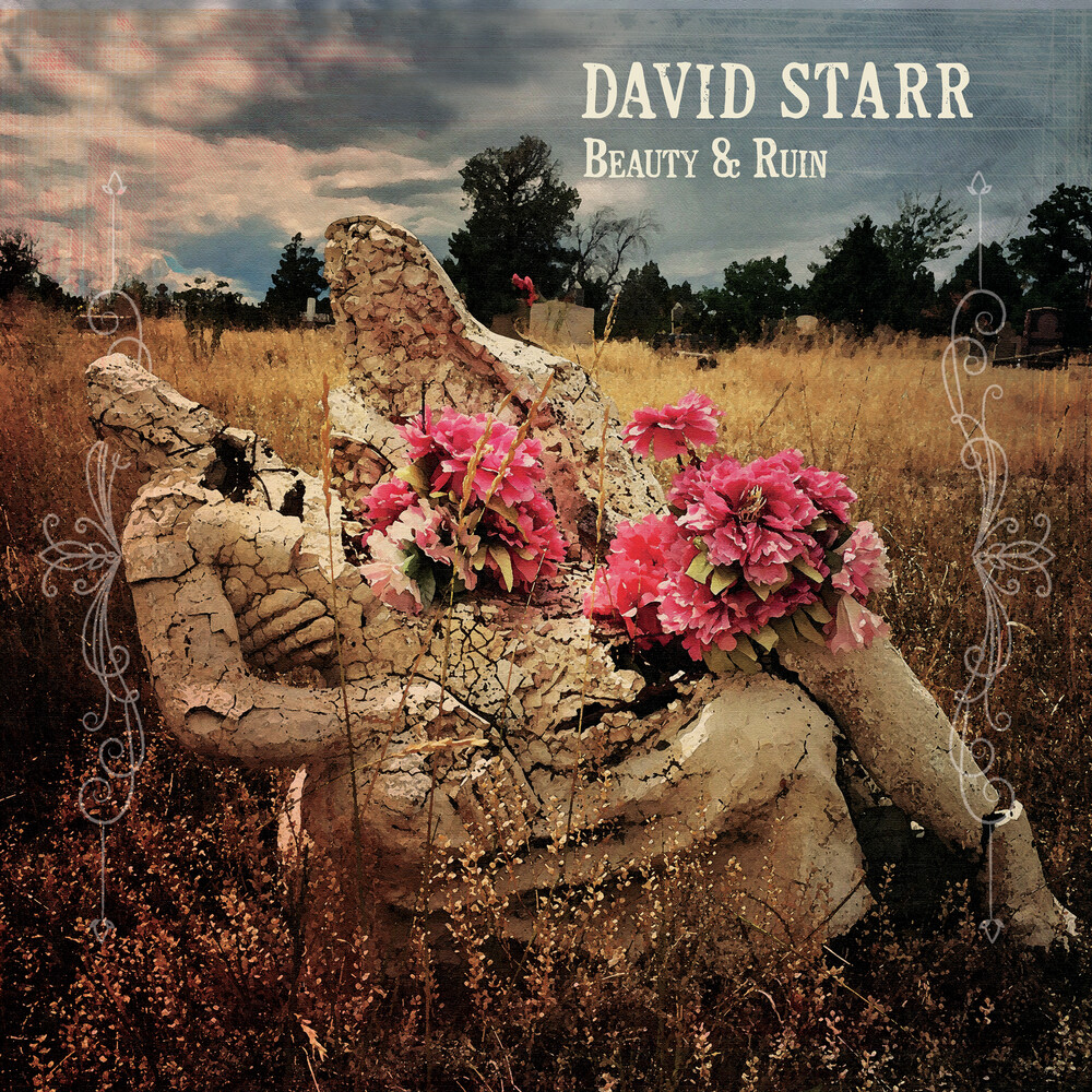 David Starr - Beauty & Ruin [LP]