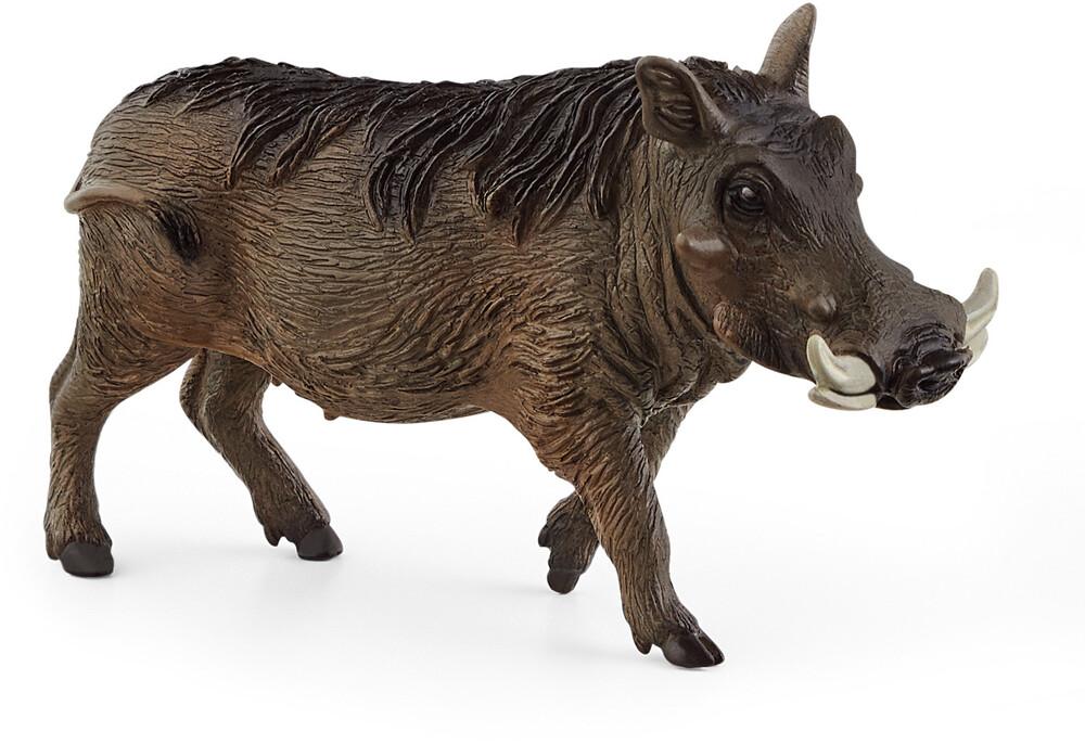 Schleich - Schleich Warthog