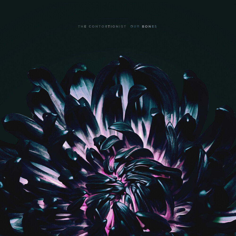 The Contortionist - Our Bones EP