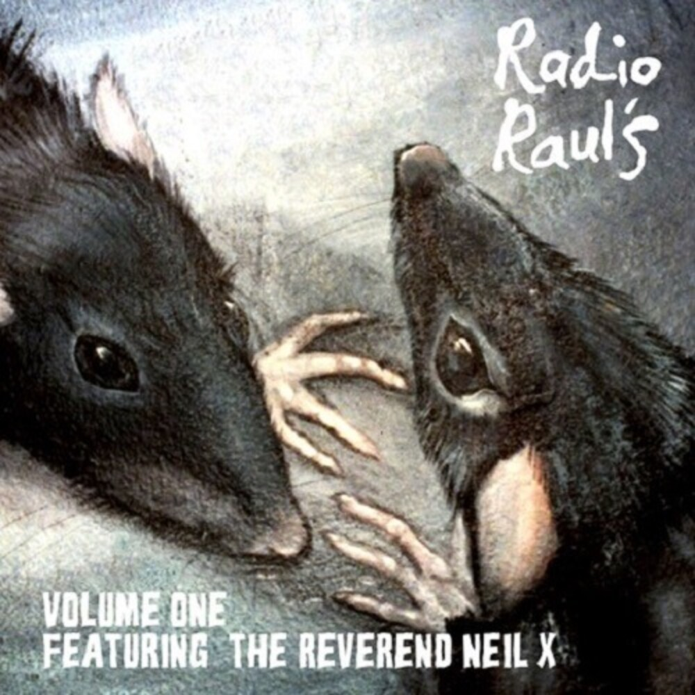 Radio Raul's Vol. 1 / Various - Radio Raul's Vol. 1 / Various