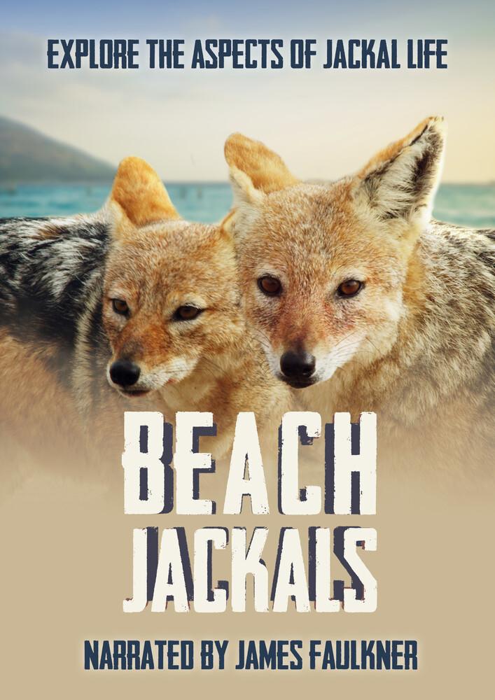 - Beach Jackals