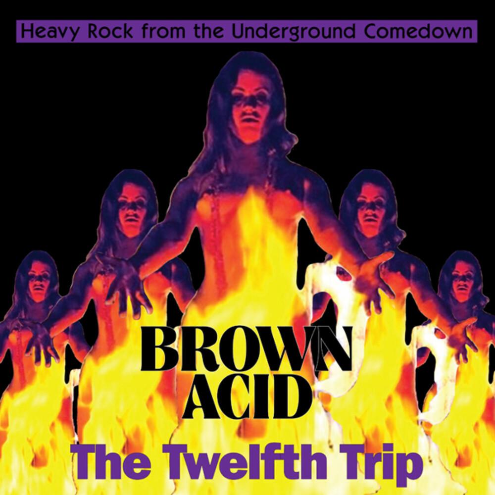 Brown Acid - The Twelfth Trip / Various - Brown Acid - The Twelfth Trip / Various