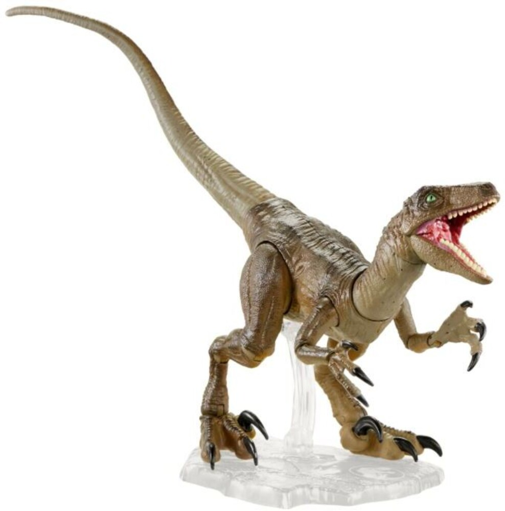 Amber Collection Jurassic World - Amber Collection Jw Velociraptor (Afig) (Clcb)