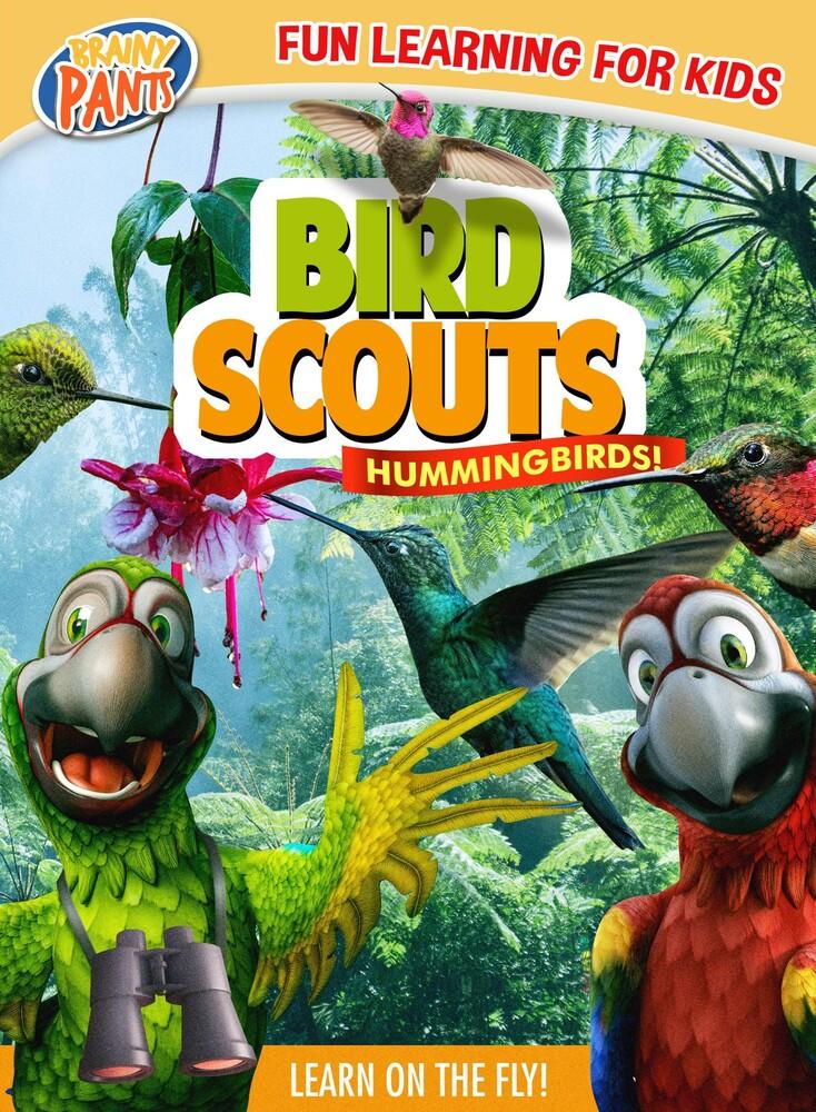 - Bird Scouts: Hummingbirds