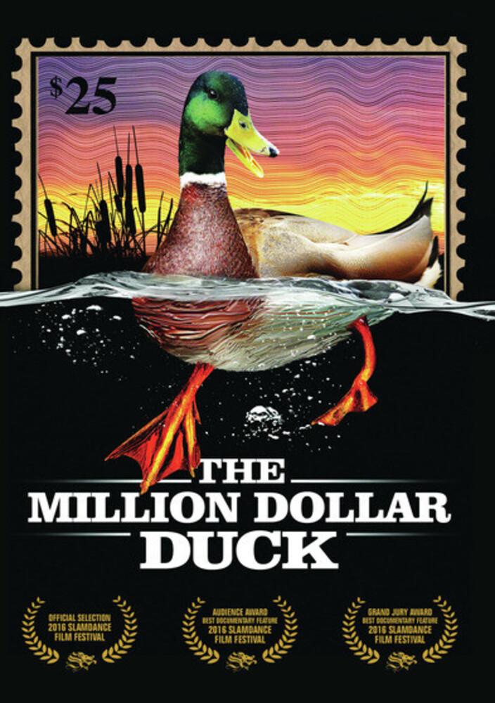 Million Dollar Duck - The Million Dollar Duck