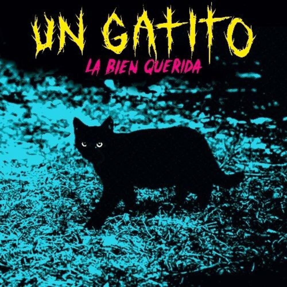 La Bien Querida - Un Gatito (Mgta) (Spa)